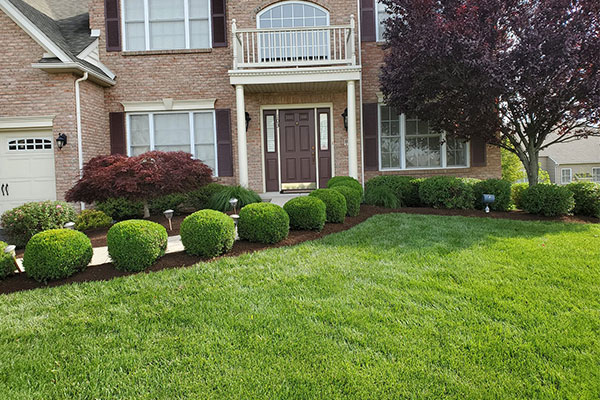 Hilltown Landscaping Services Pa 18927 Hilltown Pa Landscaping Services Landscaping Services Hilltown Pa 18927 Montgomery County Landscaping Company Residential Landscaping Bucks County Montgomery County Commercial Landscapers